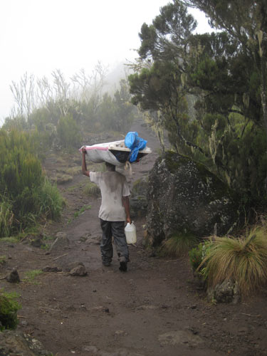 porter carrying load in the rain